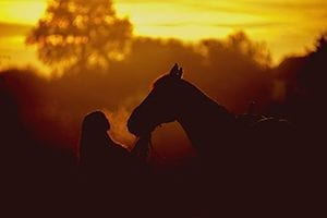 linehans horse floats;horse floats lancefield;icredit horse float loans;new horse floats victoria;icredit horse float;secured;unsecured;business;abn;rural;ag;agricultural;farm;equine;horse;horse riding;equitana;loan refinance;consolidation